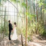 Bride and Groom in Bamboo