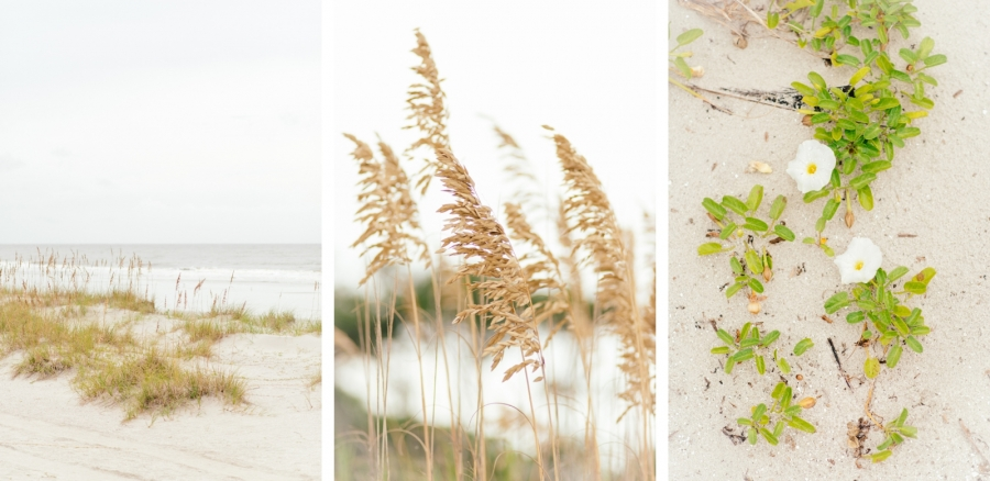 Hilton Head Island Omni Hotel Beach Wedding
